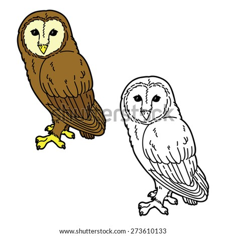 funny owl. Vector illustration coloring page of cute cartoon owl for children and scrap book