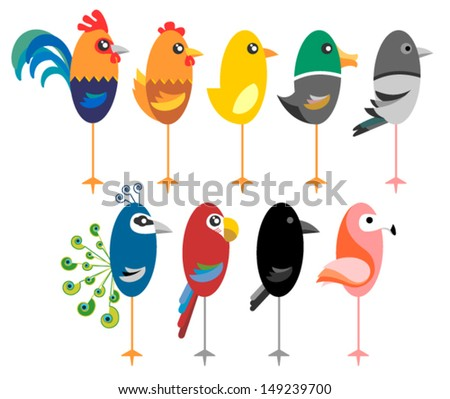 funny vector birds - stock vector