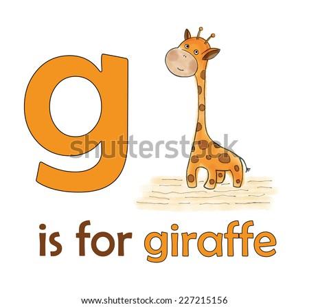 G giraffe children alphabet kids educational stock photo photo g is for giraffe children alphabet for kids educational books giraffe illustration for letter spiritdancerdesigns Gallery