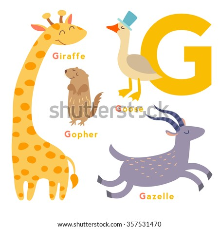 G letter animals set. English alphabet. Vector illustration, isolated on white background - stock vector