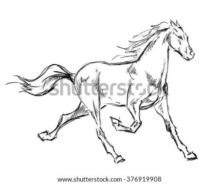 Galloping horses. Hand-drawn illustration - stock vector