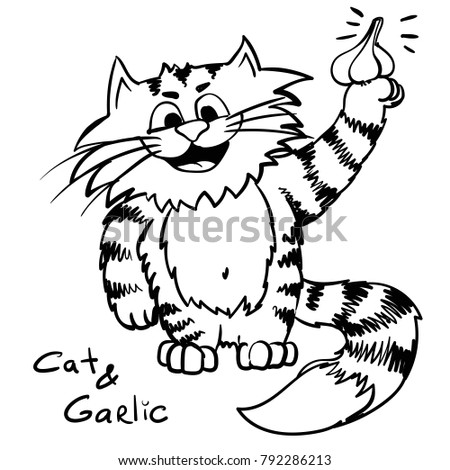 Garlic and cat. Vegetables kitty on the kitcen.  infantile outline sketch cat for coloring book. Kitty in   the morning for print. Doodle happy chef cook cartoon lazy tom. So much food