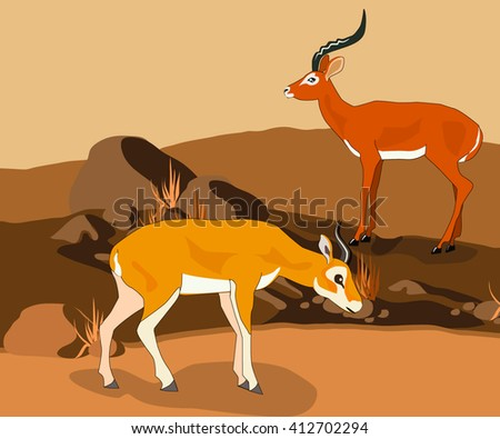 Gazelles in the natural environment. Vector illustration.