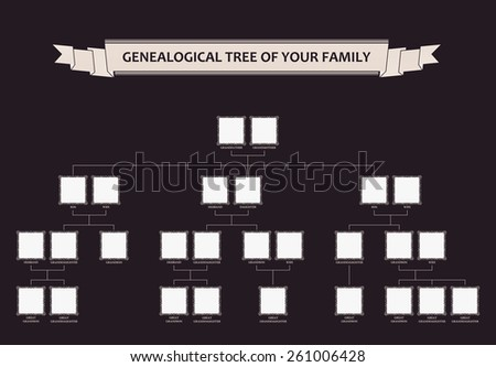 Genealogical tree of your family. Calligraphic vector frames ornament - stock vector