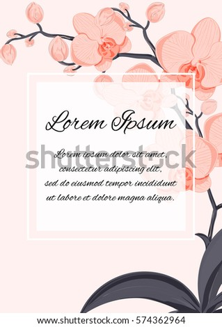 Generic A4 Template Of An Invitation Incl Wedding Birthday Anniversary Or Similar