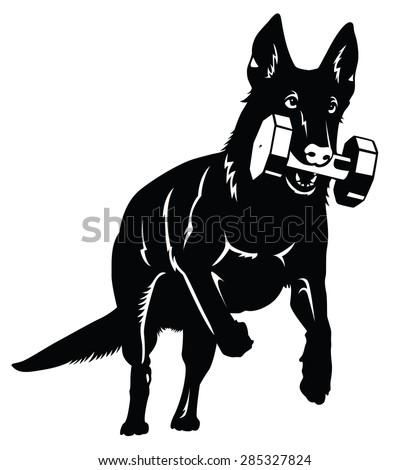 German shepherd Dog silhouette with retrieve - stock vector