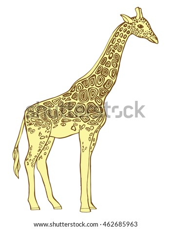 Giraffe Africa Animal Zoo Line Art Vector de stock462685963 ...