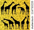 Giraffe detailed silhouettes illustration collection background vector - stock photo