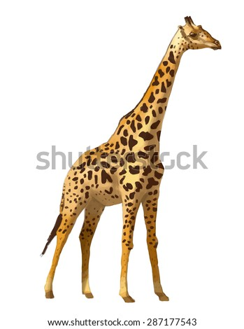 Giraffe hand drawn vector colorful illustration