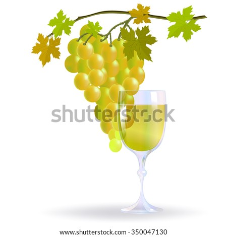 Glass of white wine and bunch of grapes for wine list or restaurant menu.