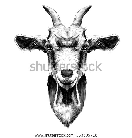 Goat Head Stock Images, Royalty-Free Images & Vectors ... Goat Face Side Drawing