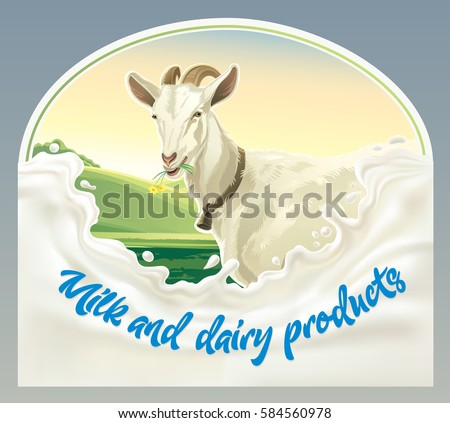 Goat, in frame from splash of milk against the background of a rural landscape. Vector illustration.