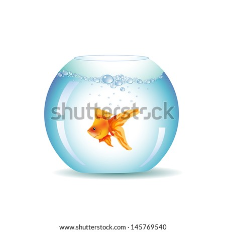 Golden Fish In Aquarium, Isolated On White  - stock vector