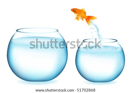 Golden Fish Jumping To Other Aquarium, Isolated On White - stock vector