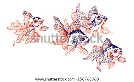 Golden fish on white background - two colors, blue and red - stock vector