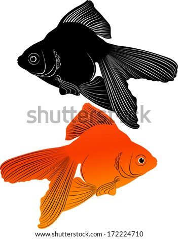 goldfish carp - stock vector