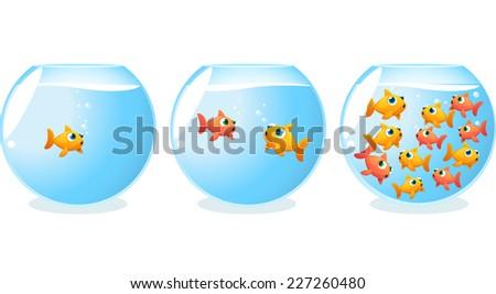 Goldfish generations fish tanks progression over time vector illustration. - stock vector