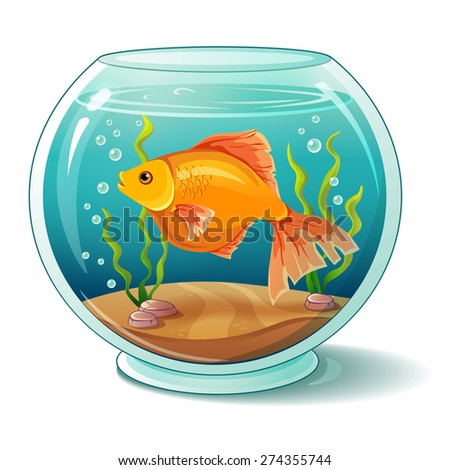 Goldfish in aquarium - stock vector