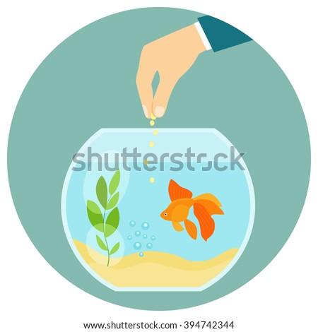 Goldfish in aquarium isolated. Feeding goldfish. Hand holding fish food. Flat vector illustration - stock vector