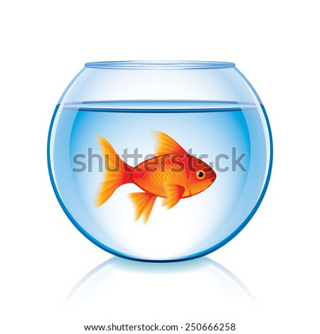 Goldfish in bowl isolated on white photo-realistic vector illustration - stock vector