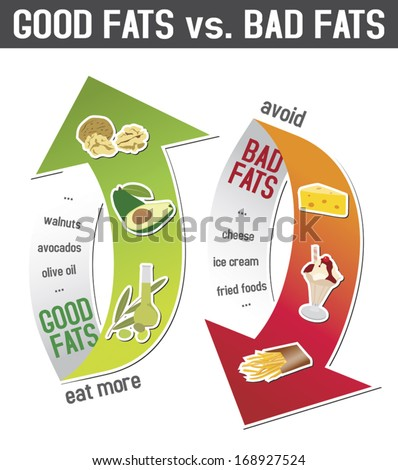 Good fats and bad fats, polyunsaturated and monounsaturated fats vs. saturated  or trans fatty acids; infographic - stock vector