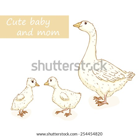 Goose and gosling. Cute animals family with mom and baby. Vector illustration - stock vector