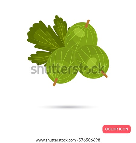 Gooseberry color icon. Cartoon style for web and mobile design