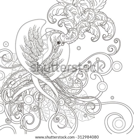 gorgeous bird coloring page in exquisite style - stock vector
