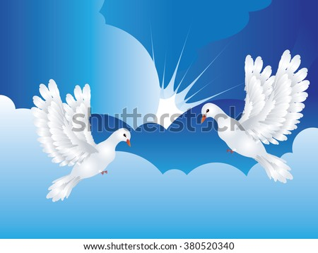 Graceful flying white pigeon, dove in the blue sky.