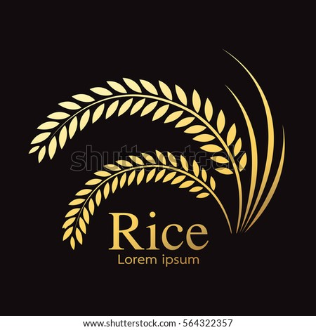 grain organic natural product ,Rice gold , rice.
