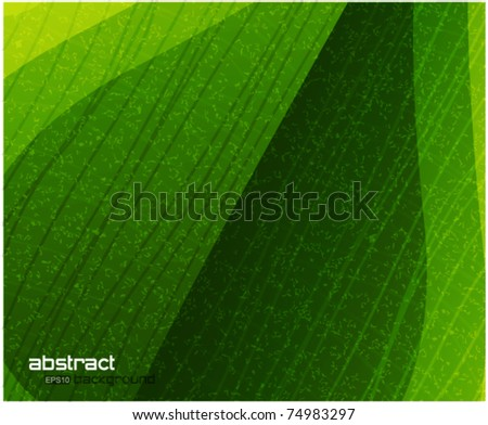 Grainy leaf eps10 vector background - stock vector