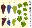 Grape bunches and leaves vector set - stock photo