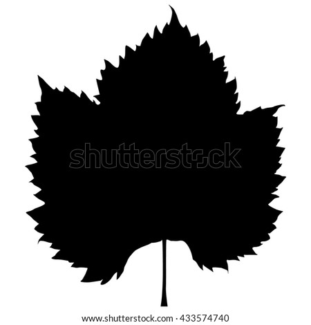grape leaf silhouette on white background