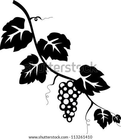 grape vine stock vector 113261410 shutterstock rh shutterstock com Leaf Vector Black Leaf Vine Vector