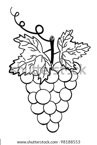 grapes clipart black and white. grapes. bunch of grapes on a white background. clipart black and