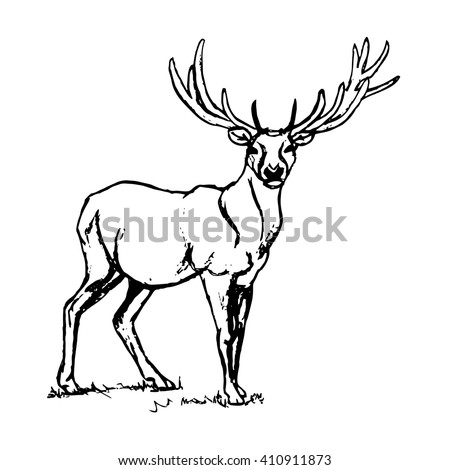 Graphic design of a deer with big antlers