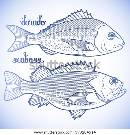 Handdrawn Sketch Fish Lobster Clams Squid Stock Vector 394213678