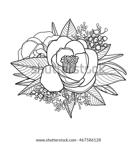 Vector Camellia Leaves And Flowers In Cute Vignette Isolated On White Background