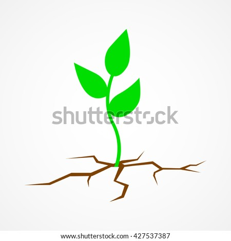 Graphic illustration of a young tree growing on arid land.