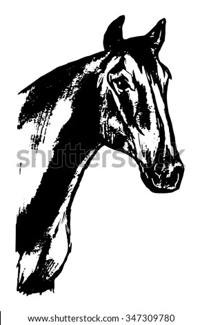 Graphic image of a horse head - stock vector