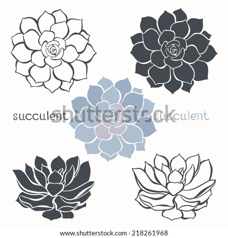 Graphic set with succulents  isolated on white background. Hand drawn vector illustration, sketch. Elements for design. - stock vector