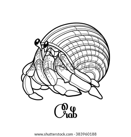 Graphic vector crab in the shell drawn in line art style. Sea and ocean creature isolated on white background. Seafood element. Coloring book page design for adults and kids - stock vector