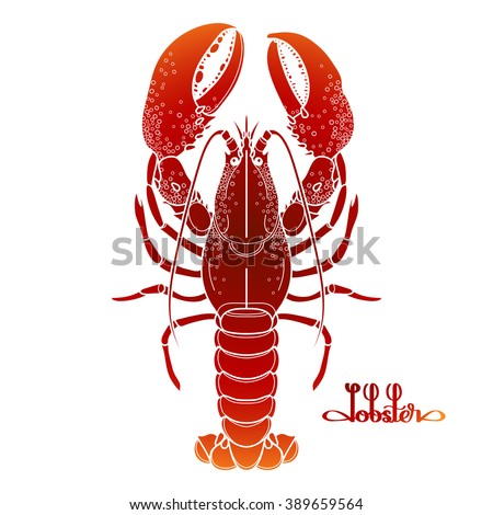 Graphic vector lobster drawn in line art style. Sea and ocean creature isolated on white background in red colors. Top view. Seafood element. Coloring book page design - stock vector