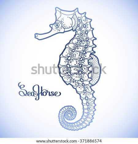 Graphic vector Seahorse drawn in a line art style. Ocean creature isolated in blue colors - stock vector