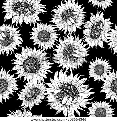 Graphic White Sunflowers On A Black Background Vector