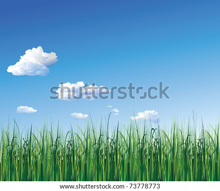 grass - stock vector