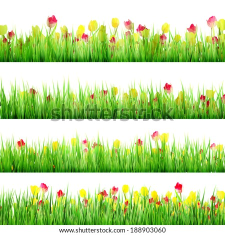 Grass And Flower Set, Isolated On White Background. And also includes EPS 10 vector - stock vector