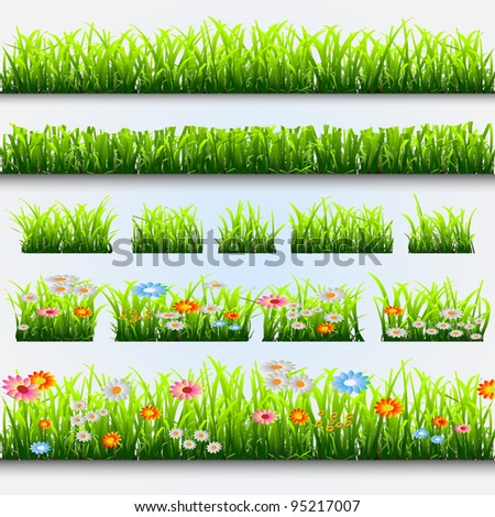 Grass and flowers.Vector collection - stock vector