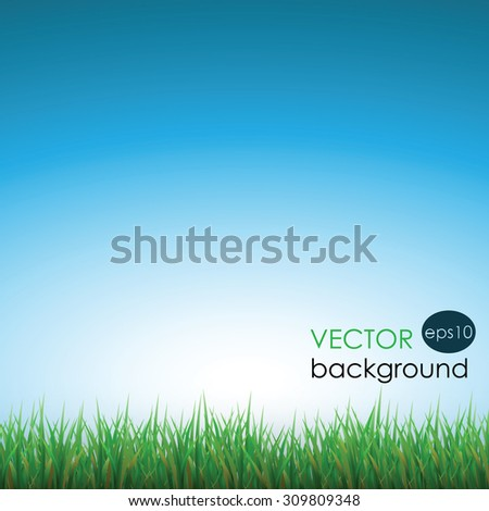grass and sky background, summer background, green grass vector illustration - stock vector