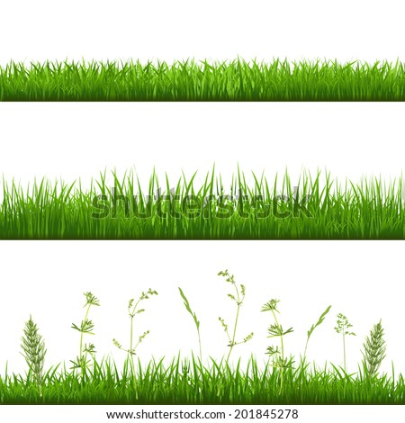 Grass Borders, With Gradient Mesh, Vector Illustration - stock vector